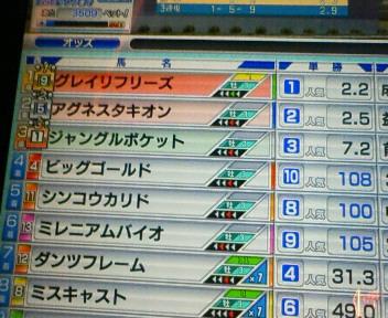 7_20090614080037.jpg