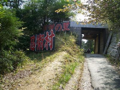 shigaraki10