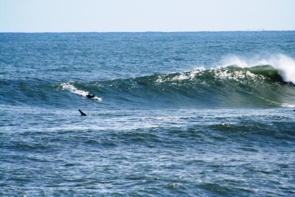 1010角の浜 044