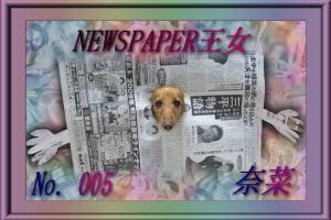 過去記事「奈菜達にもECOな服」へ