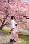 shiki_shiro02.jpg