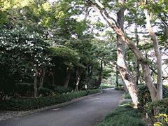 15.松の廊下跡