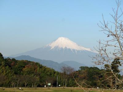 日本平運動公園からの富士山