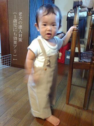 blog_img229.jpg