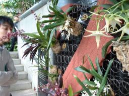 奇跡の星の植物館の4