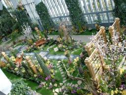 奇跡の島の植物館の1