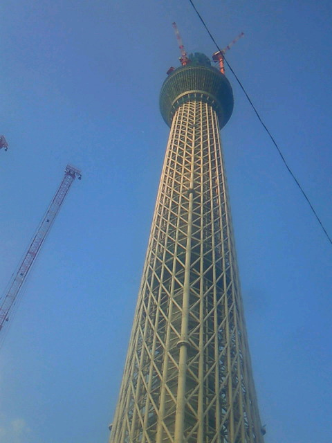 461スカイタワー