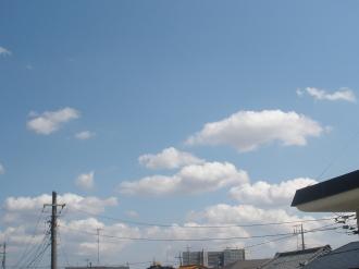 P3270149.jpg
