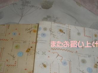 P7070461.jpg