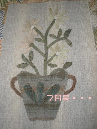 P7080463.jpg