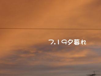 P7180521.jpg