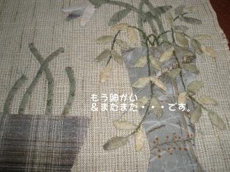 P8010059.jpg