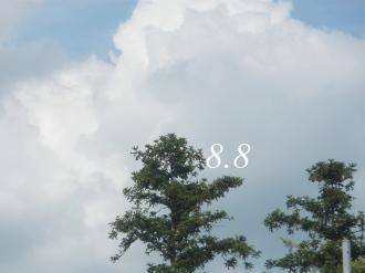 P8070075.jpg
