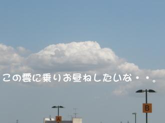 P8270079.jpg