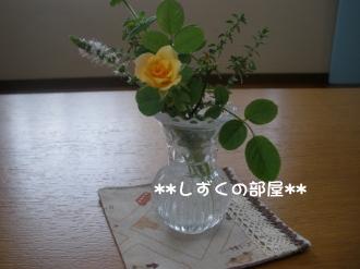 P9120123.jpg