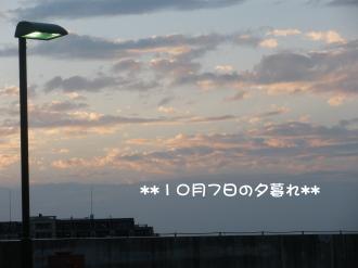 PA060208.jpg