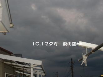 PA110237.jpg
