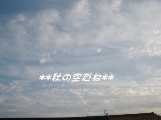 PA170255.jpg