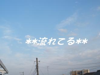 PA170260.jpg