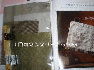 PA280310.jpg