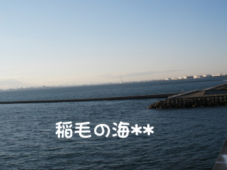 PC070167.jpg