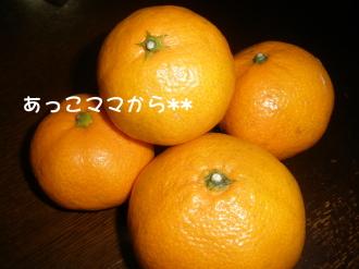 PC070169.jpg