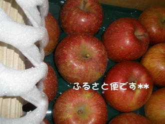 PC070170.jpg