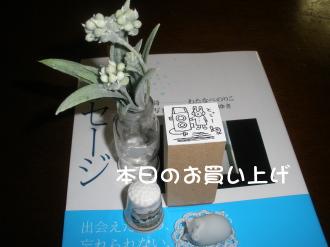 PC100180.jpg