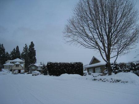 snowstorm6.jpg