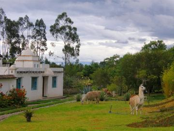 colombia-サン・パブロ・デル・ラゴ