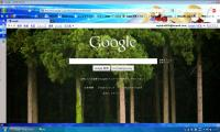 google1006101.jpg