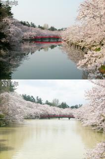 s_08_11_hikaku.jpg