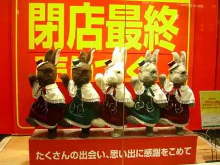 新潟大和のダンシングラビット201006