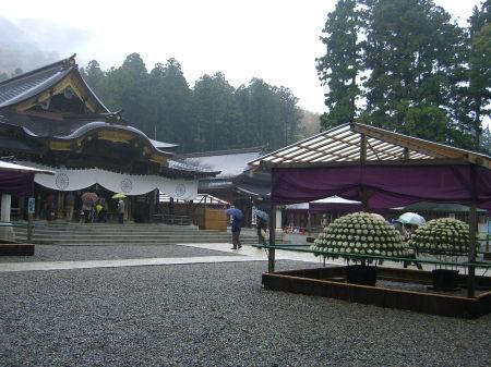 彌彦神社・菊まつり2011