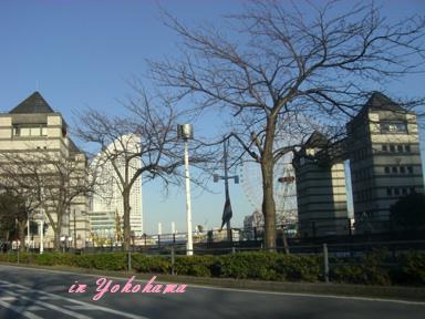1_20081212220519.jpg