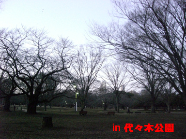 5_20081230005143.jpg