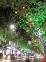 shanghai13.jpg