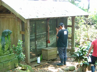 simamairi2010no17.jpg