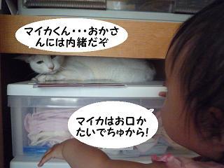maika2107043.jpg
