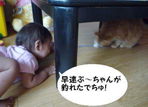 maika2107201.jpg