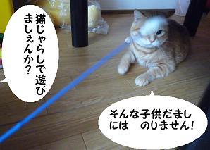 maika2107202.jpg