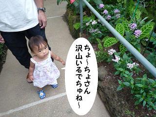 maika21072232.jpg