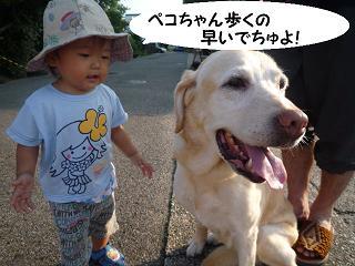 maika2108034.jpg