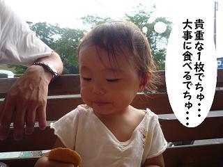 maika2108054.jpg
