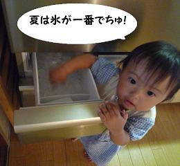maika21081301.jpg