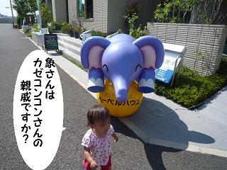maika21092611.jpg