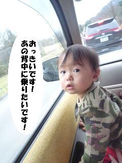 maika21121310.jpg
