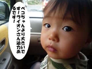 maika2112138.jpg