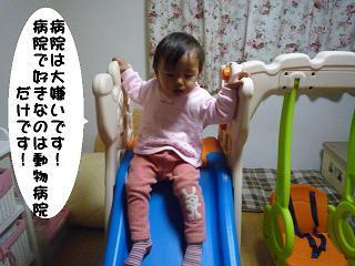 maika2112291.jpg