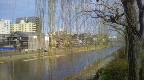 柳ごし加茂川